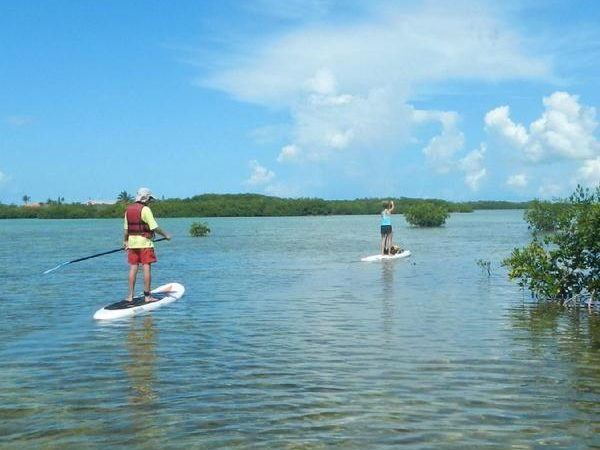 paddleboarders_grande