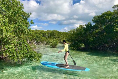 sup in mangroves (9)
